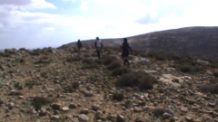 Negligence of the Israeli soldiers exposes Palestinian children at risk on the way to school, South Hebron Hills