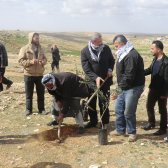 Palestinian activists with Mustafa Barghouti planting a new olive tree